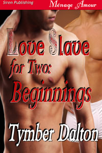 Love Slave for Two: Beginnings (Prequel)