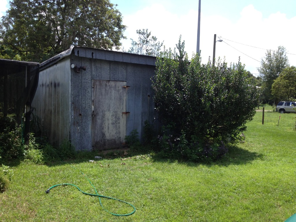 The washhouse. Please excuse our weeds, neither Hubby nor I are perfectionists. LOL
