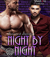 #preorder – Night By Night (Suncoast Society). Old friends reunited, a secret crush, and…more?